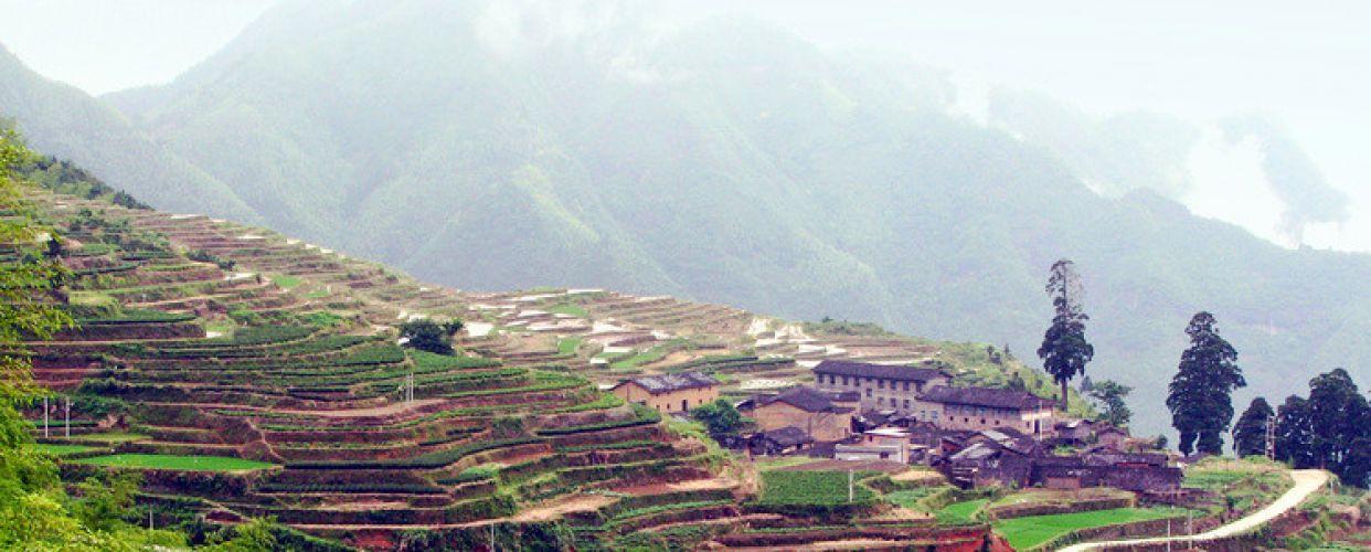 政和佛子山风景名胜区位于福建省政和县城东部的外屯乡境内,距政
